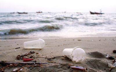 Exploitants de navires : que faire de vos déchets ?