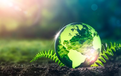 Eco-organismes : comment exporter des déchets ?